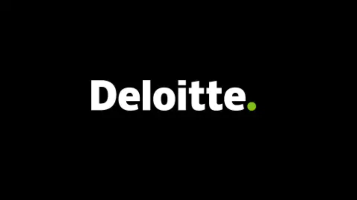 Inside Deloitte's secret contracts with ICE