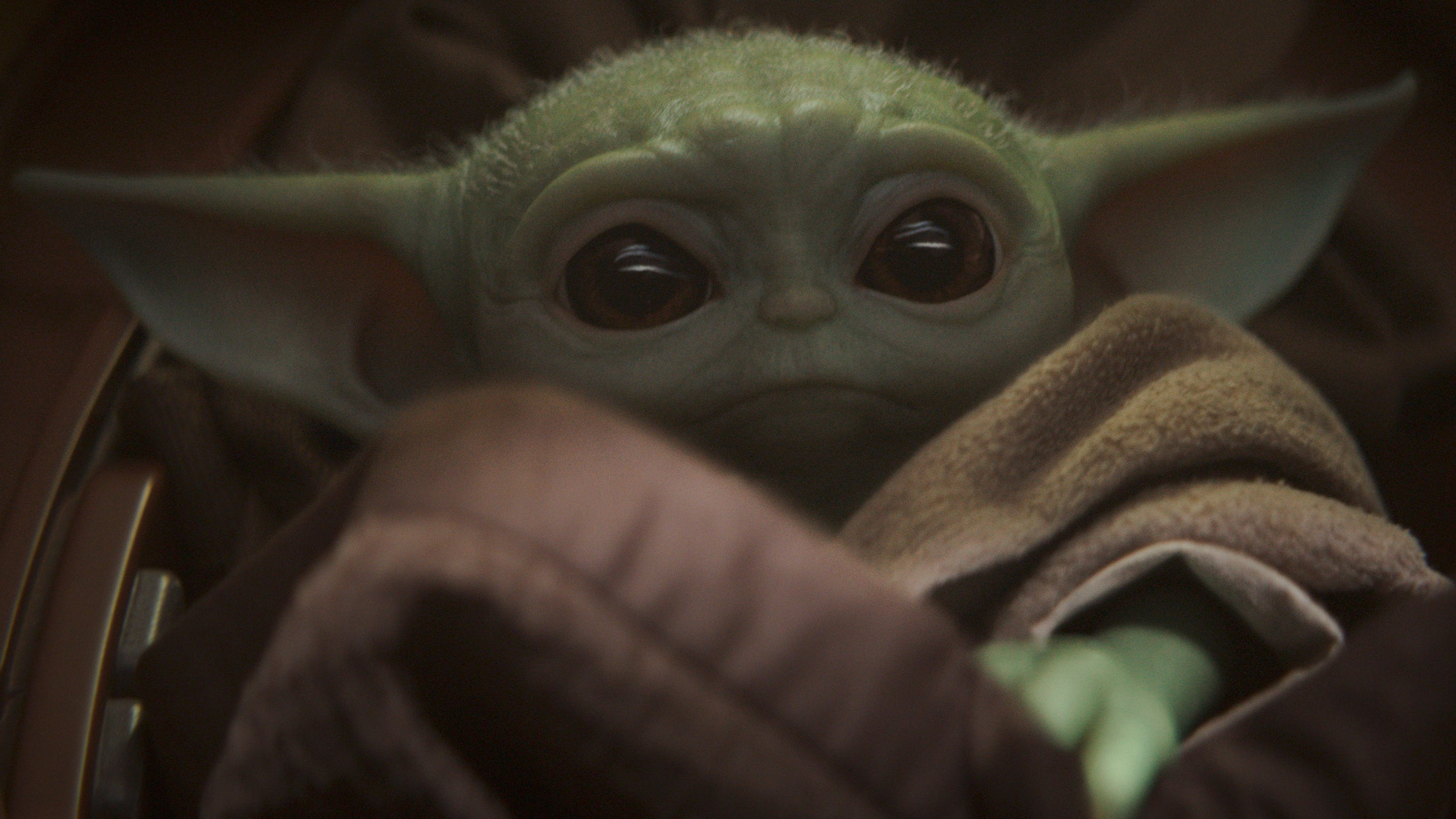 When Will Baby Yoda Grow Up The largest star wars encyclopedia in the world, with more than 163,000 articles and counting. when will baby yoda grow up