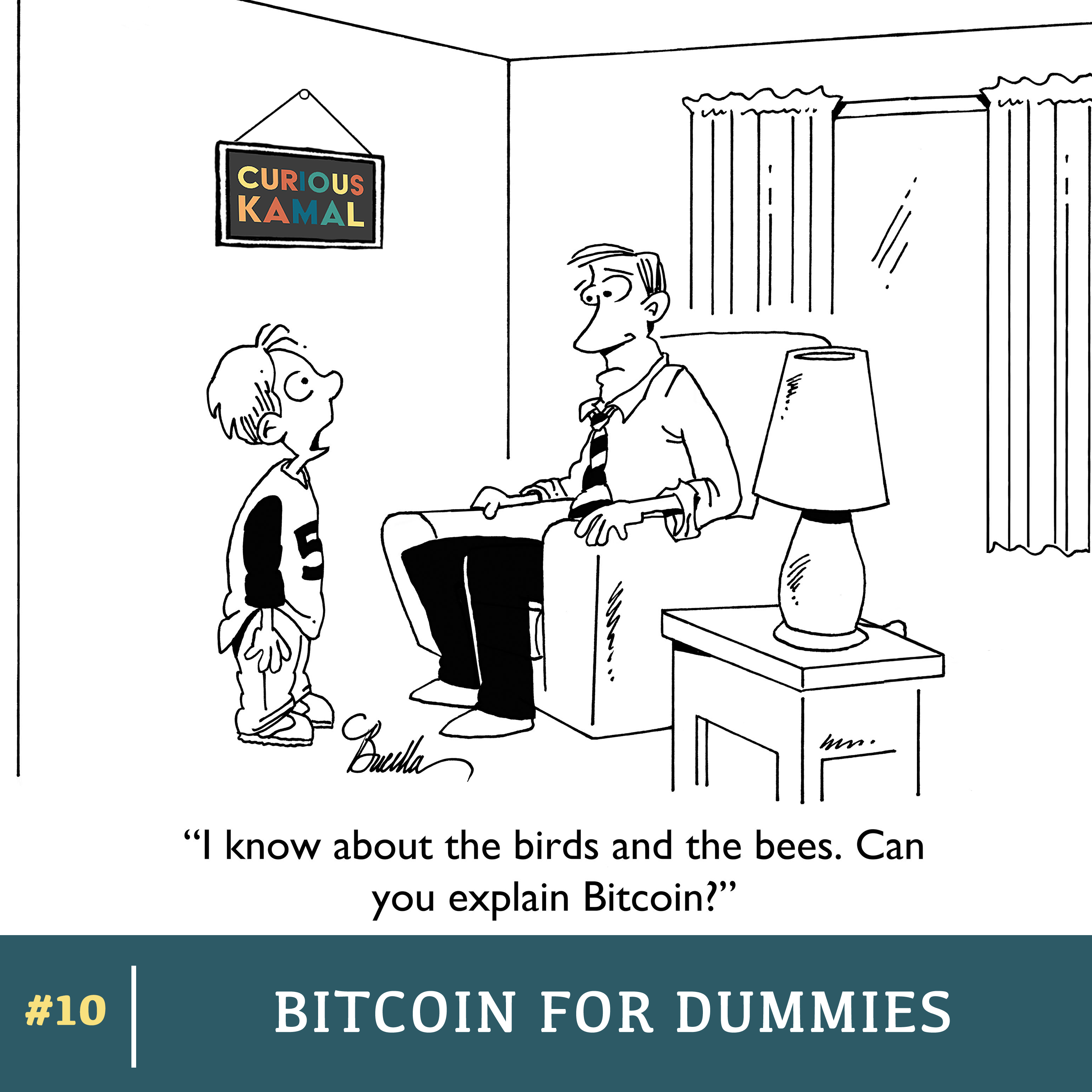 Bitcoins for dummies explained synonym indian domestic cricket betting adda