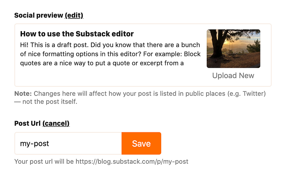 New! Customize your post's URL + social preview