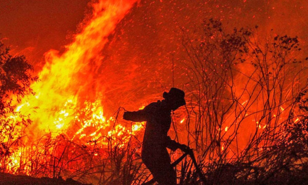 Forest Fires Rage on Southeast Asian Peninsula - Mimic News