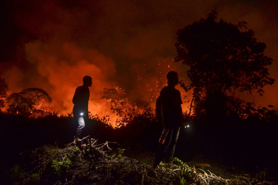 Indonesia: The Fires Next Time