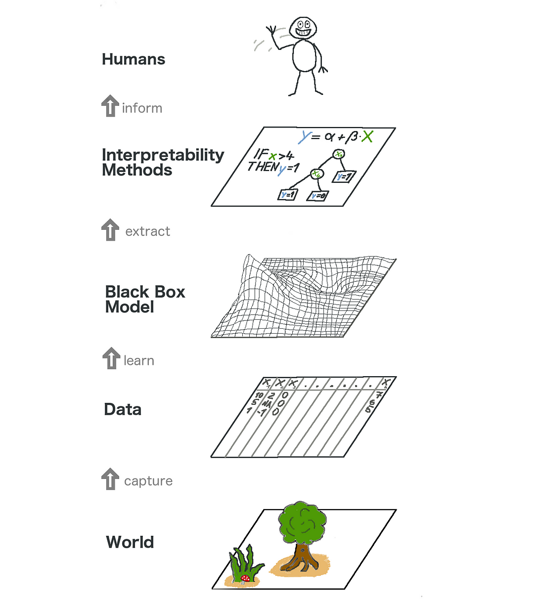 The big picture of explainable machine learning. The real world goes through many layers before it reaches the human in the form of explanations.