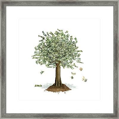 Bilderesultat for money tree