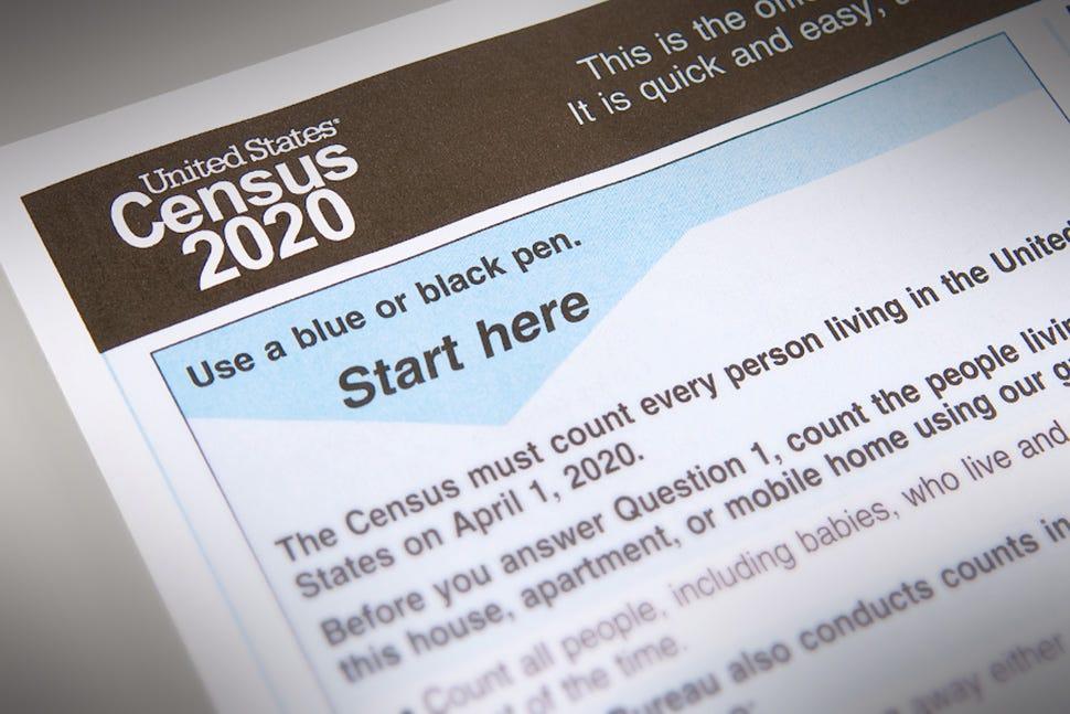 Image result for 2020 census black population