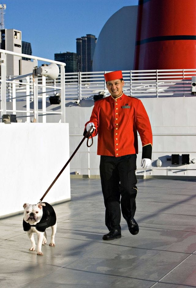 Dog aboard Queen Mary 2