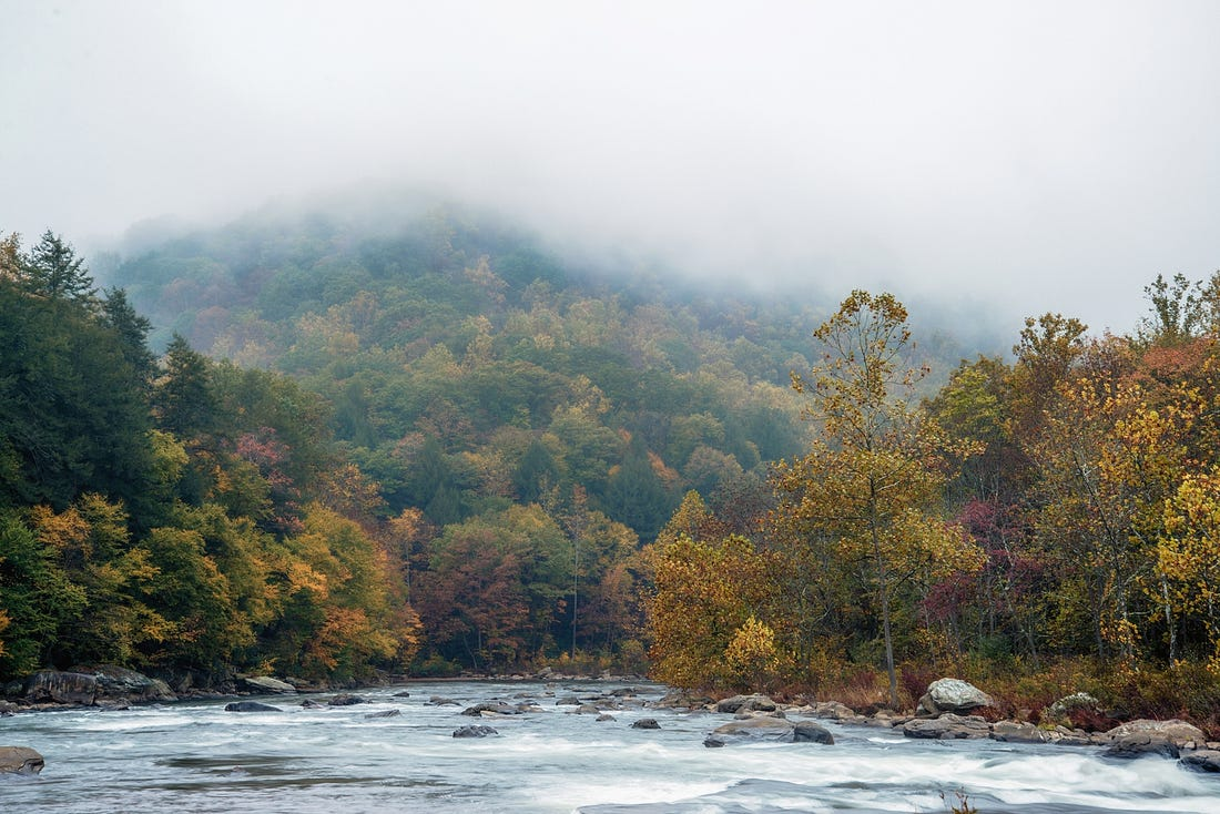 Image result for yough ohiopyle