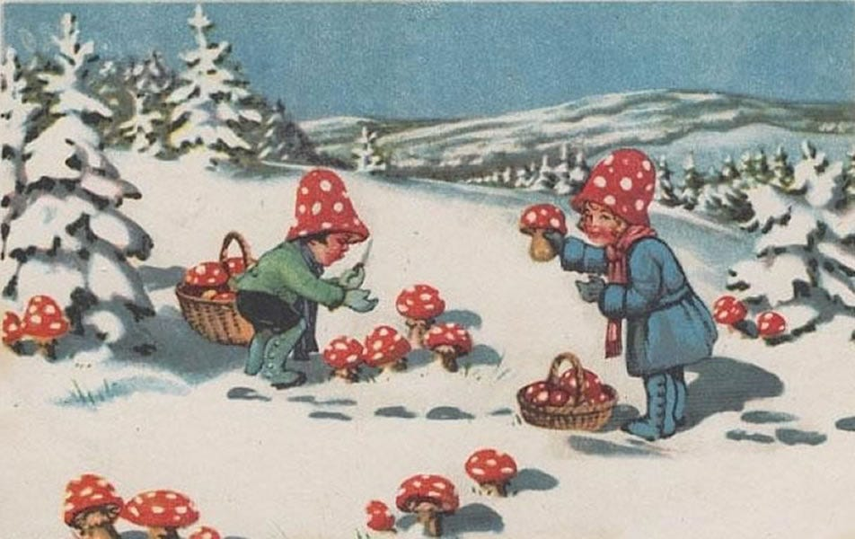Image result for old christmas cards mushrooms