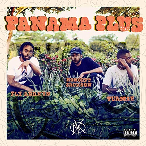 Image result for panama plus