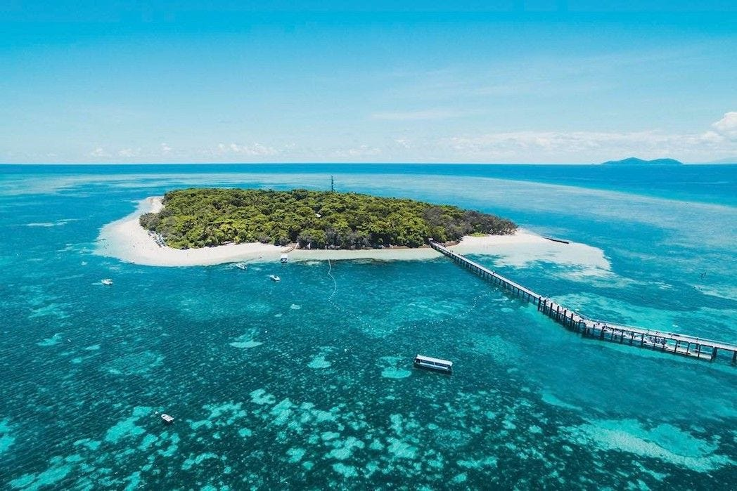 Image result for green island great barrier reef