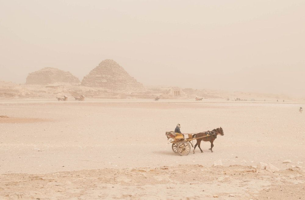 man on brown carriage with brown horse near a brown pyramid