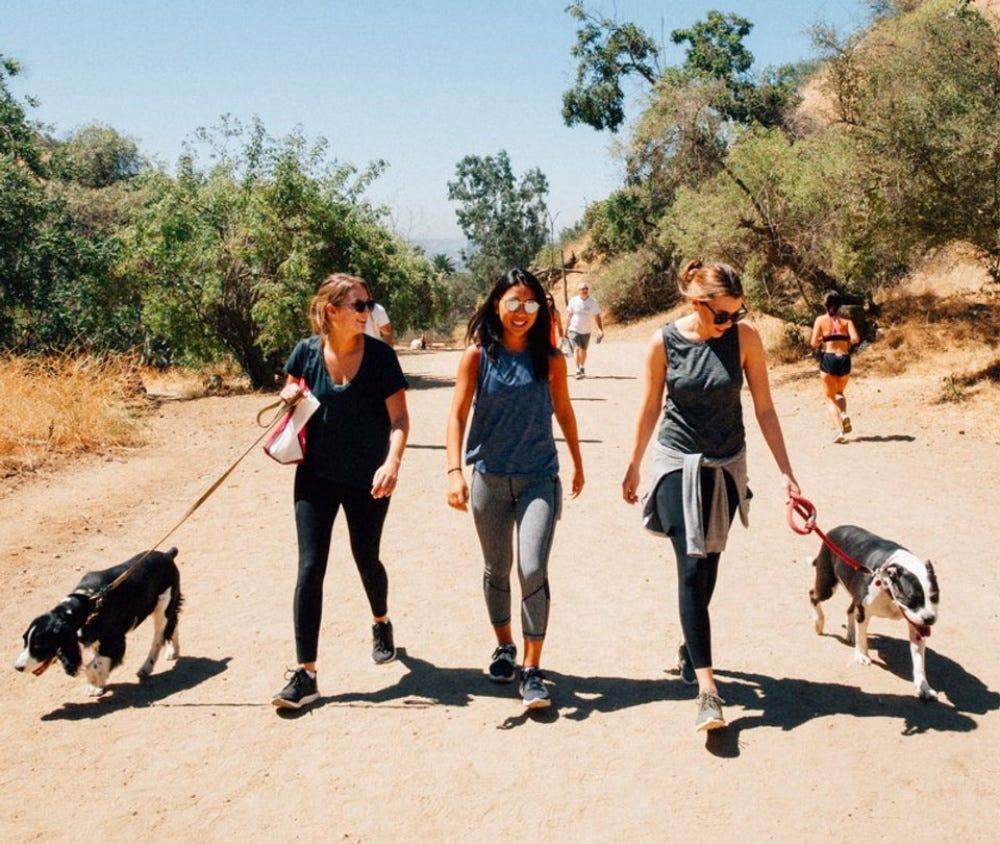 dog hike runyon canyon