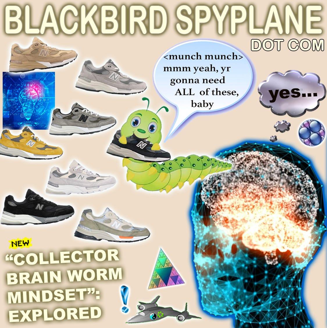 www.blackbirdspyplane.com
