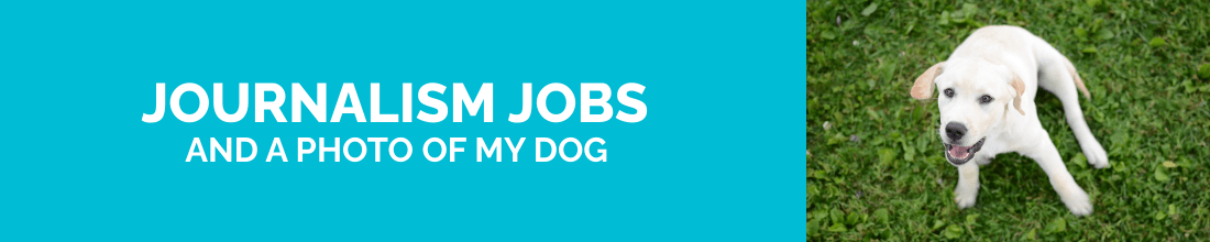 Journalism jobs and a photo of my dog