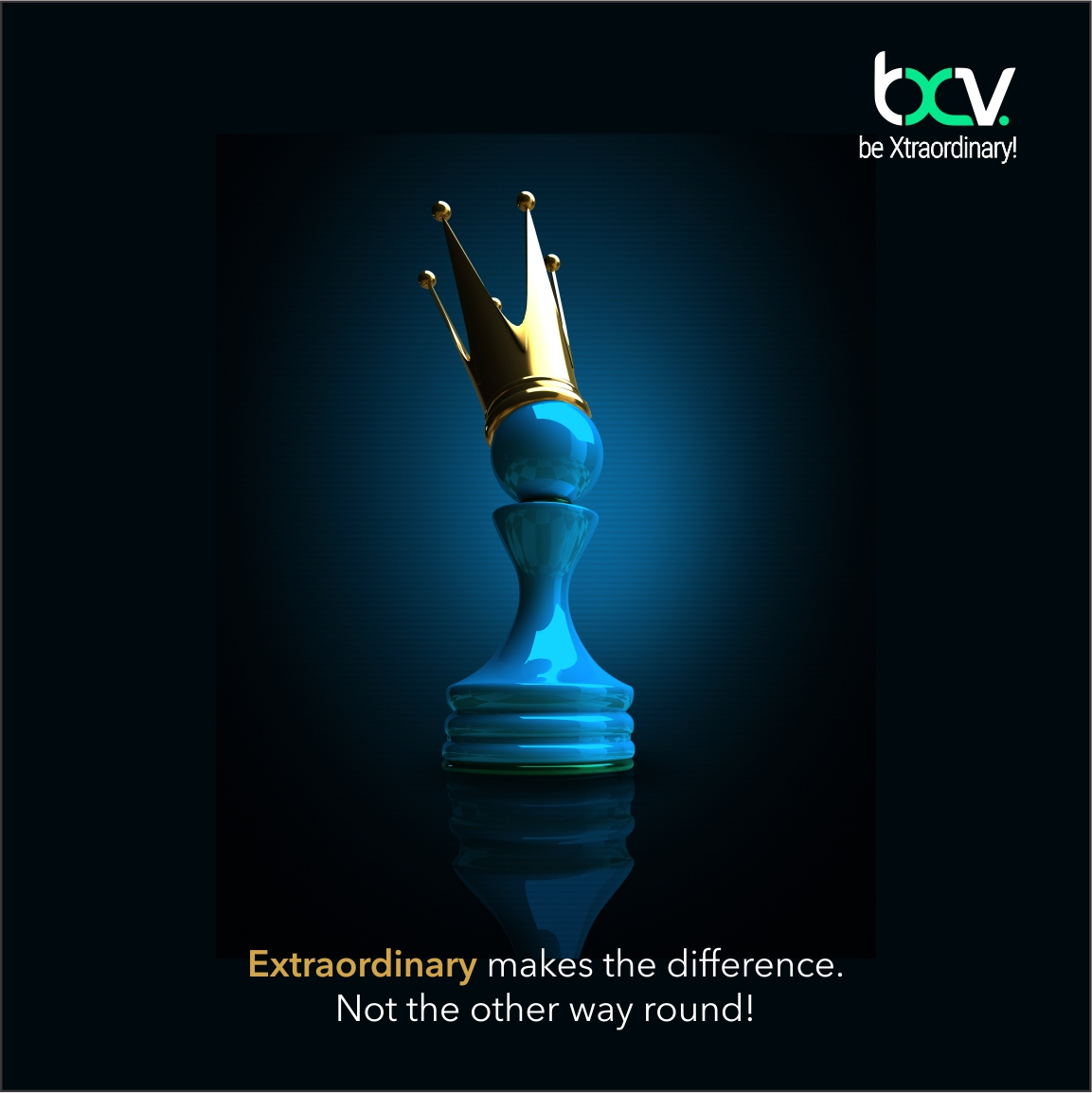 BXV Insights