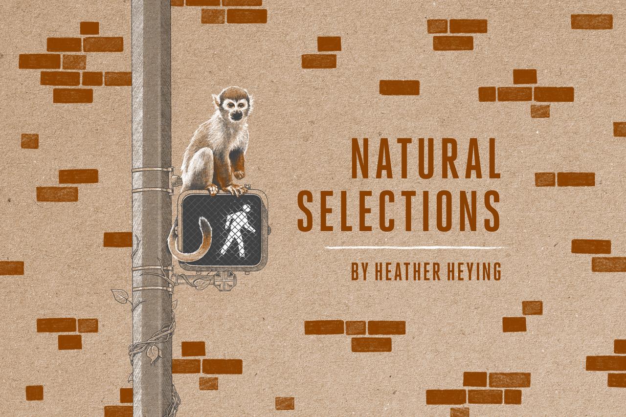 Natural Selections