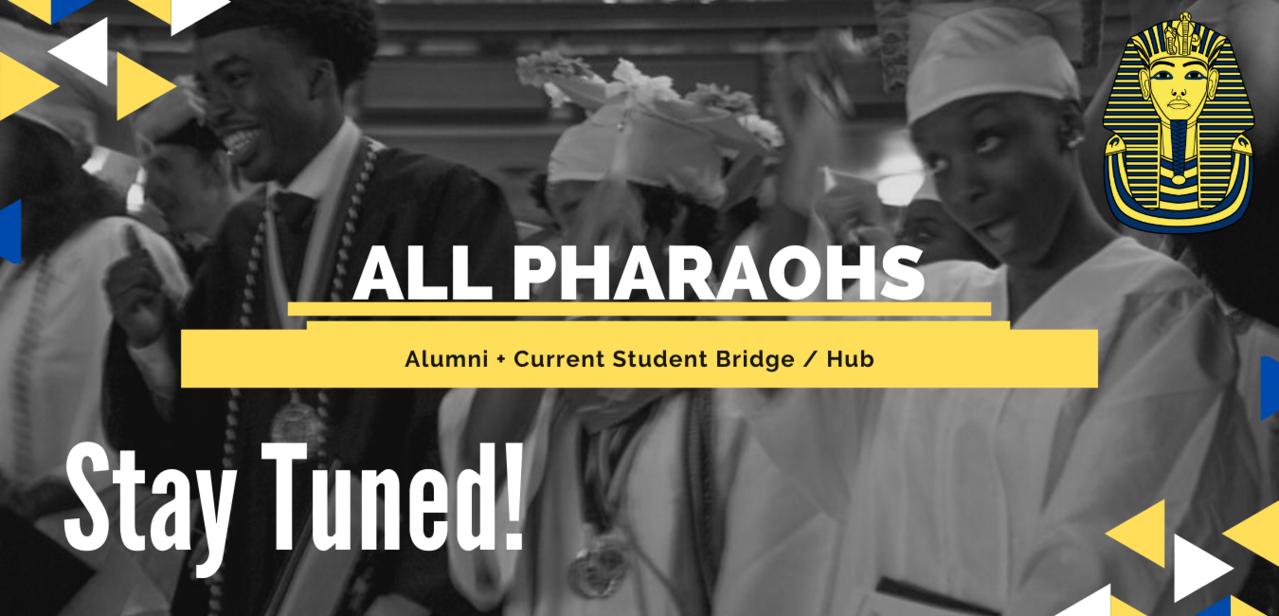 All Pharaohs Hub Newsletter