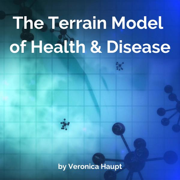 The Terrain Model of Health and Disease