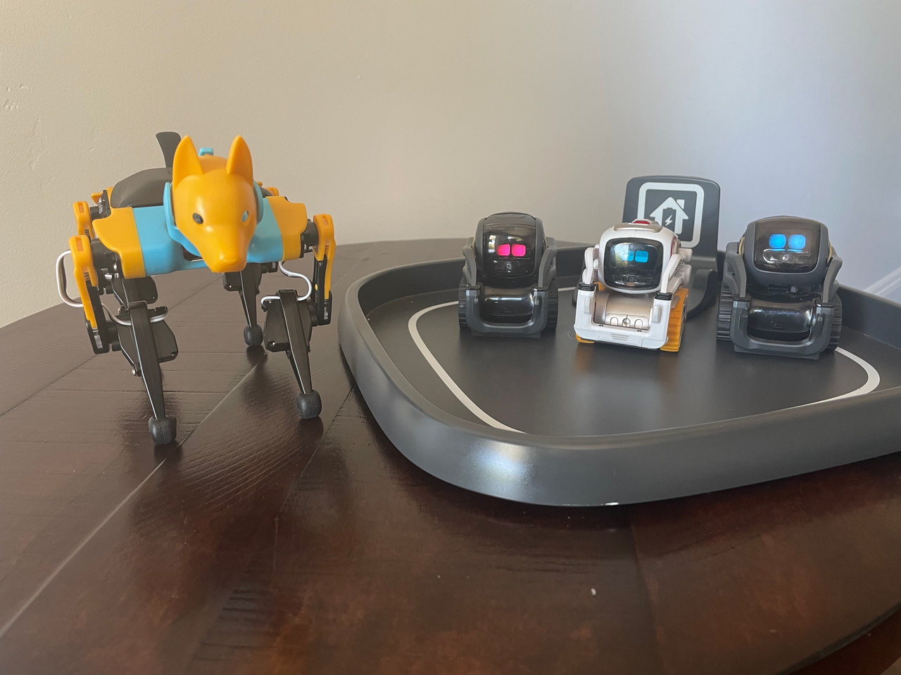 Programmable Robots Newsletter