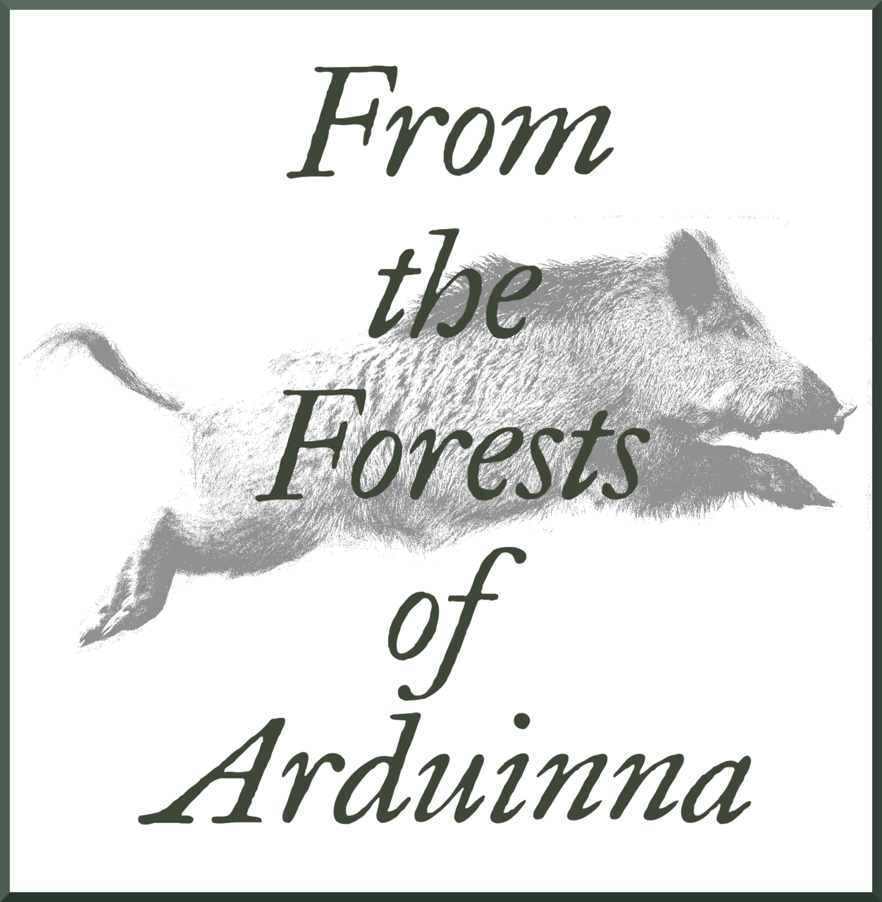 From The Forests of Arduinna