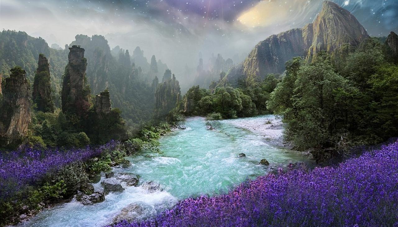 Lavender Lass Books - Newsletter