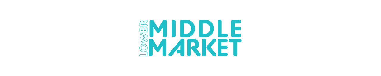 The Lower Middle Market