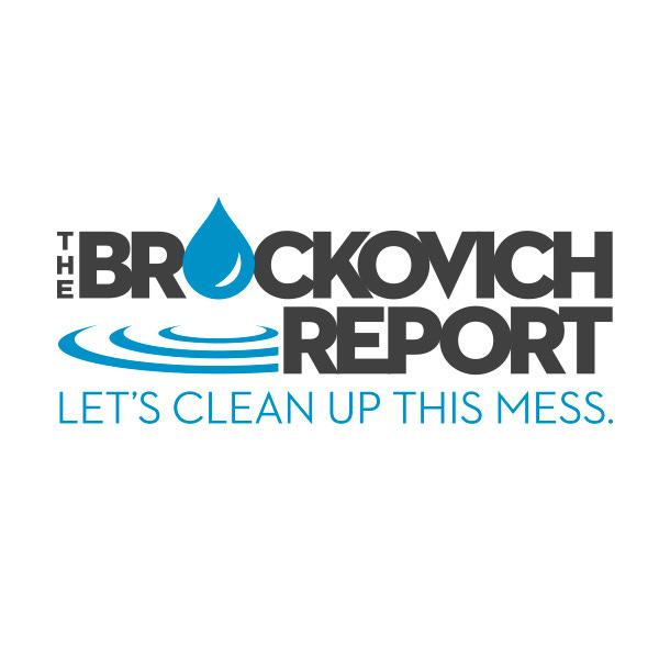 The Brockovich Report