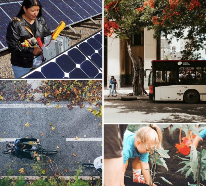 UCLA C-Solutions Newsletter