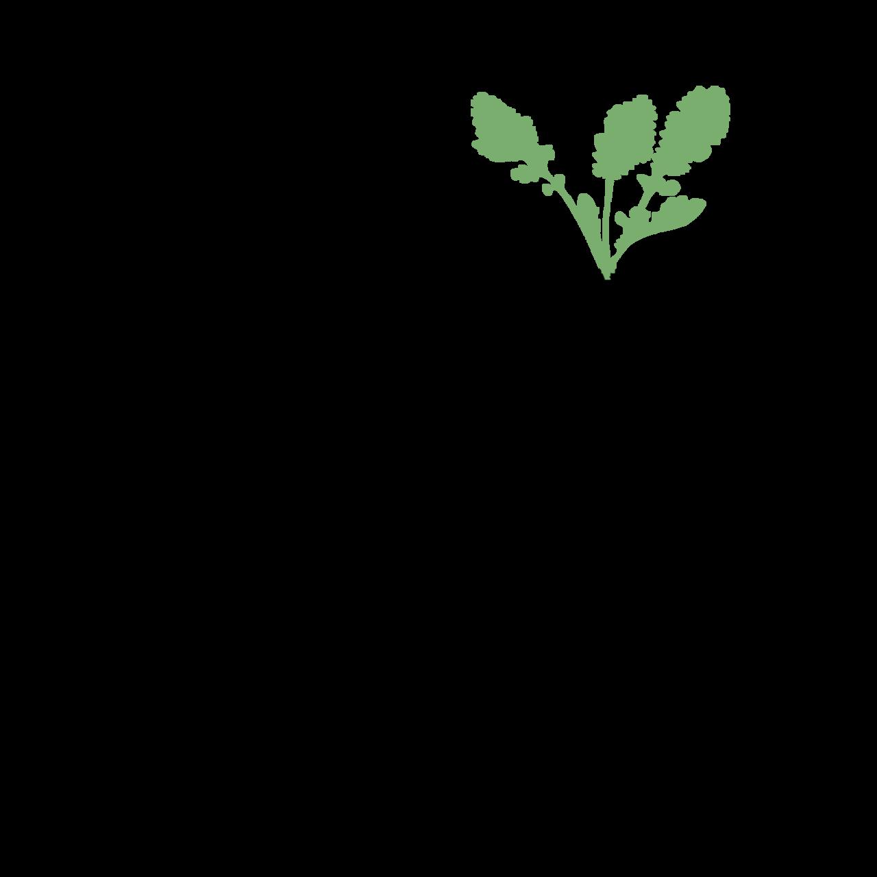 Susanality
