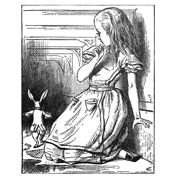 Margaret Anna Alice Through the Looking Glass