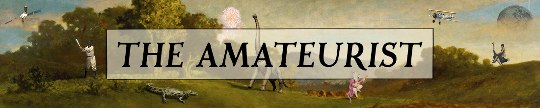 The Amateurist