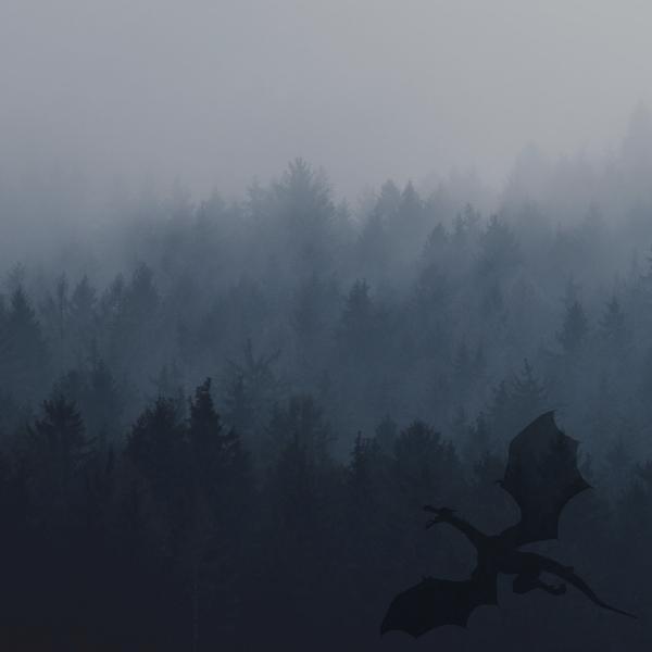 Phantasms & Shadow Images