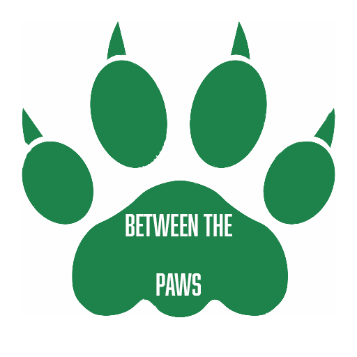 Between The Paws