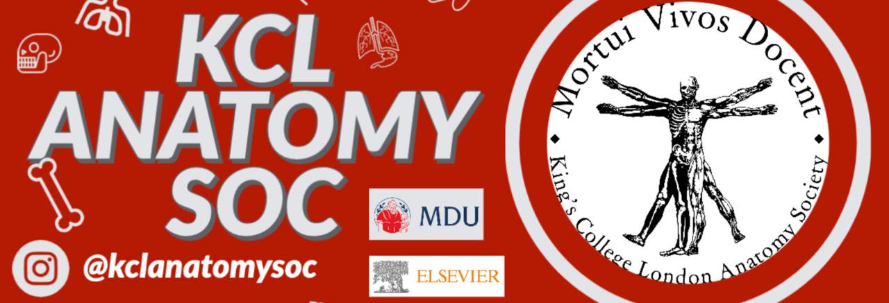KCL Anatomy Society