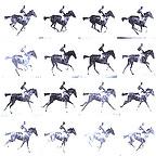 The Galloping Tintype