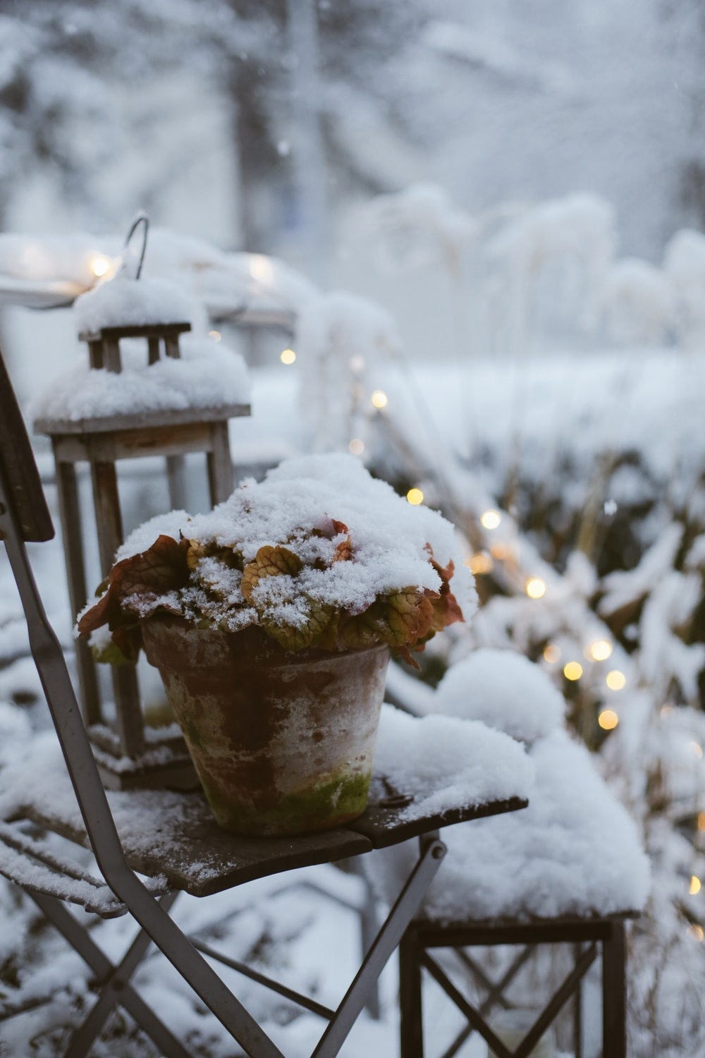 planter and lantern covered with snow outdoor