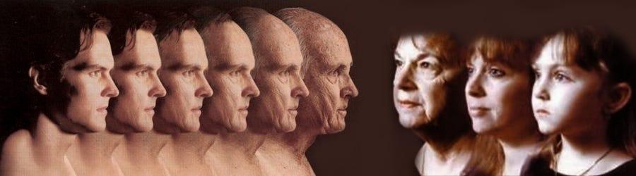 Resultado de imagen de longevidad