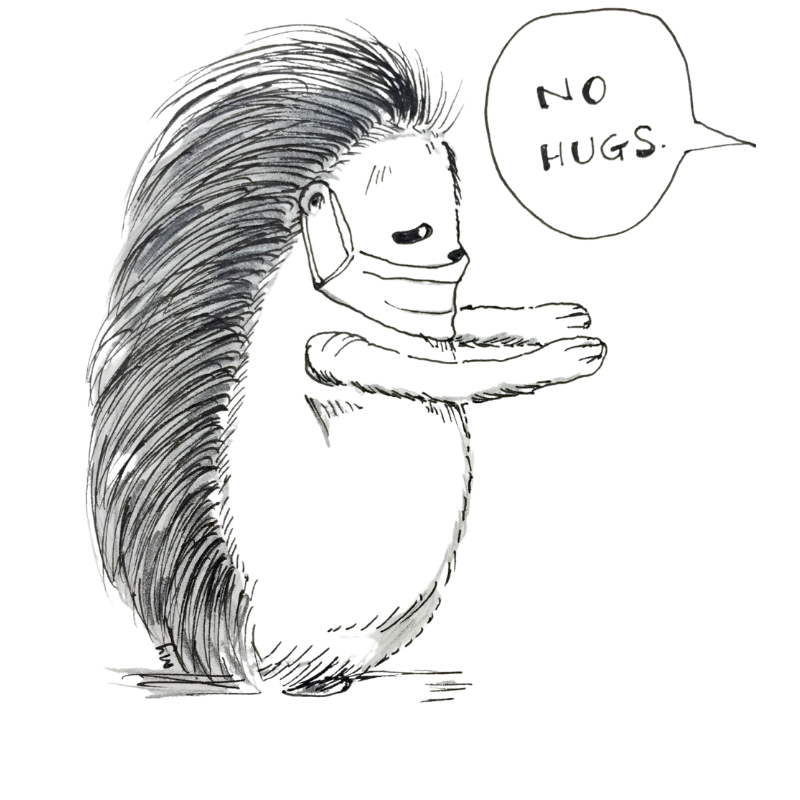 ink and pencil drawing of porcupine wearing a mask, holding up both of its hand, reaching out for a hug. but the other party said, no hugs. Because of the COVID19 virus. Porcupine has a sad, droopy eye.