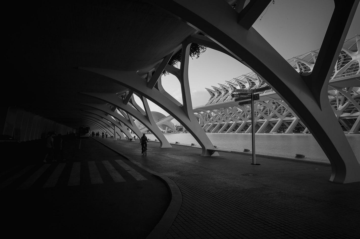 Ciudad de las Artes y las Ciencias - Valencia-DSC_2506-pete-carr-pete-carr.jpg