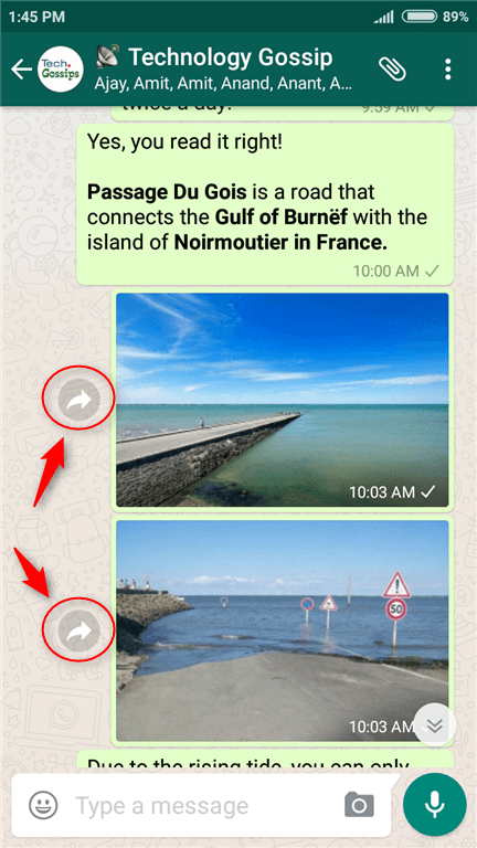 WhatsApp Beta added Quick Forward option for Media - DoubtSolver