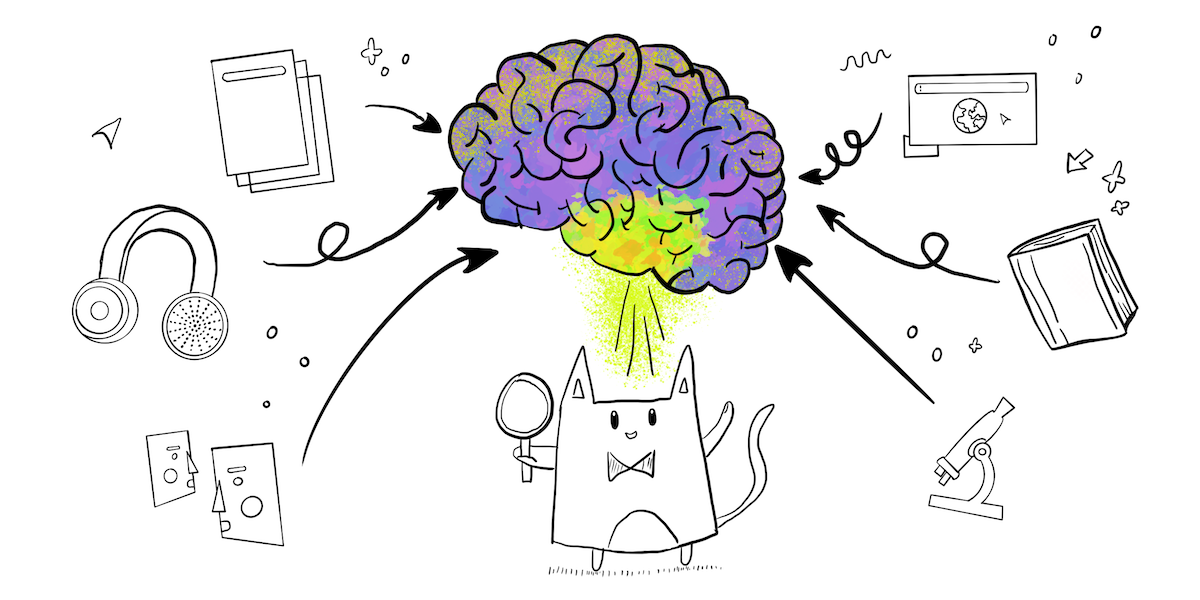 Cat holding a magnifying glass, viewing a brain with different sources of information entering it—papers, audio, people talking, websites, books and a microscope (representing science)
