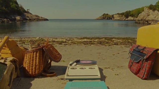 Moonrise Kingdom - tabby kitten peeking out of fishing basket on beach
