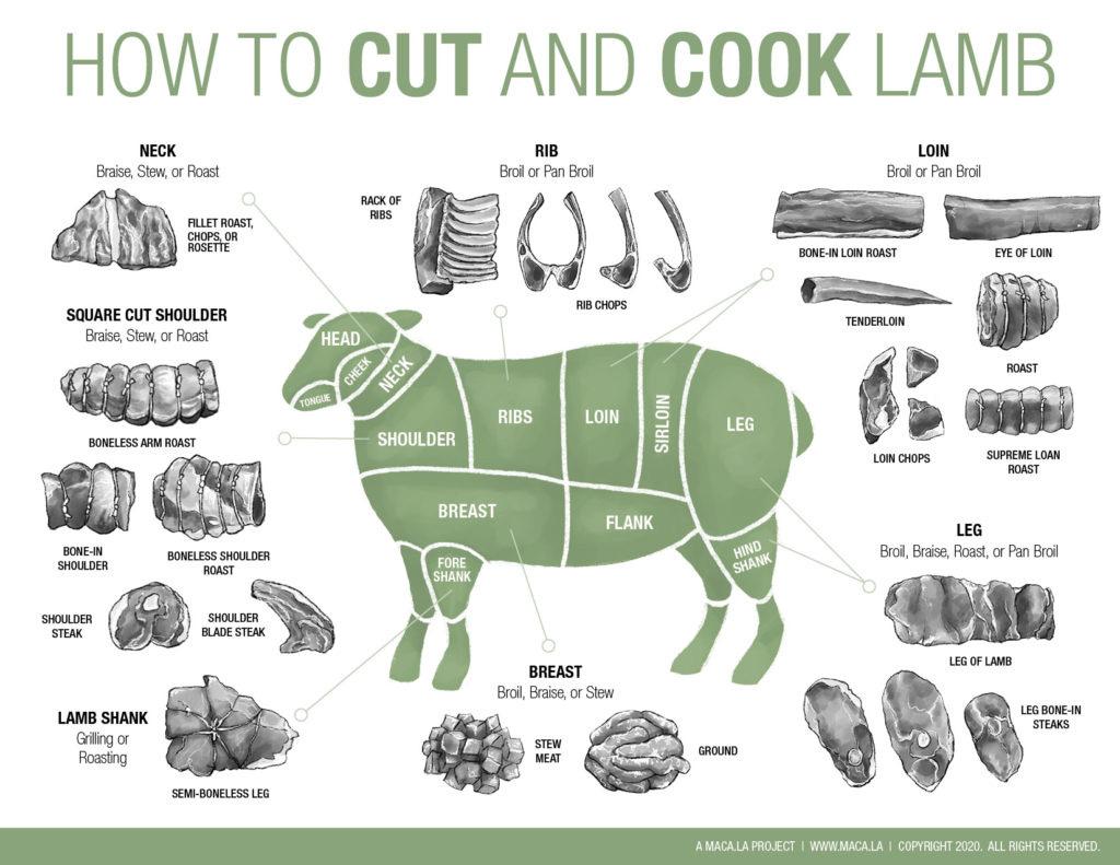 Butcher, Cut and Cook Lamb