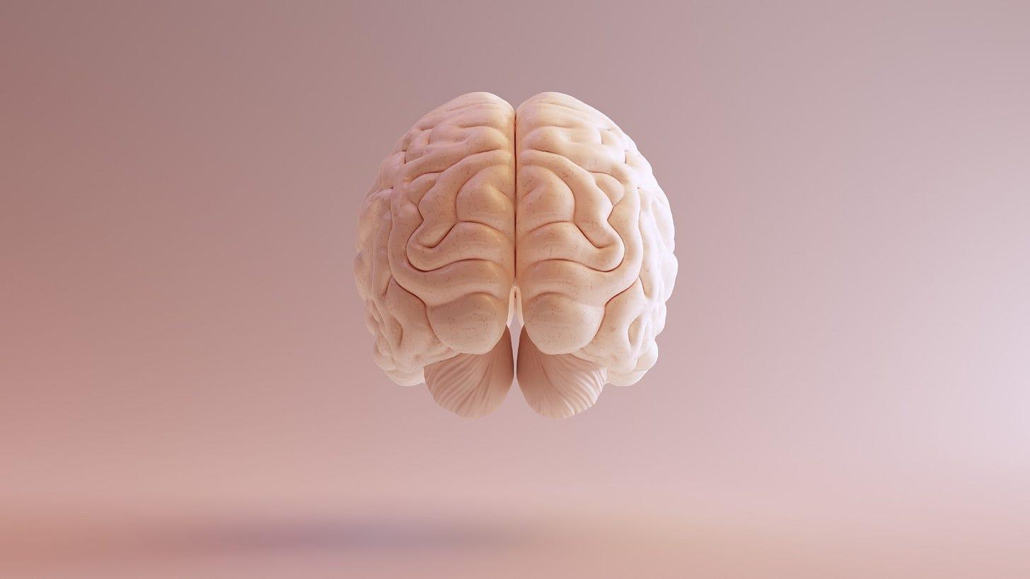 Floating human brain
