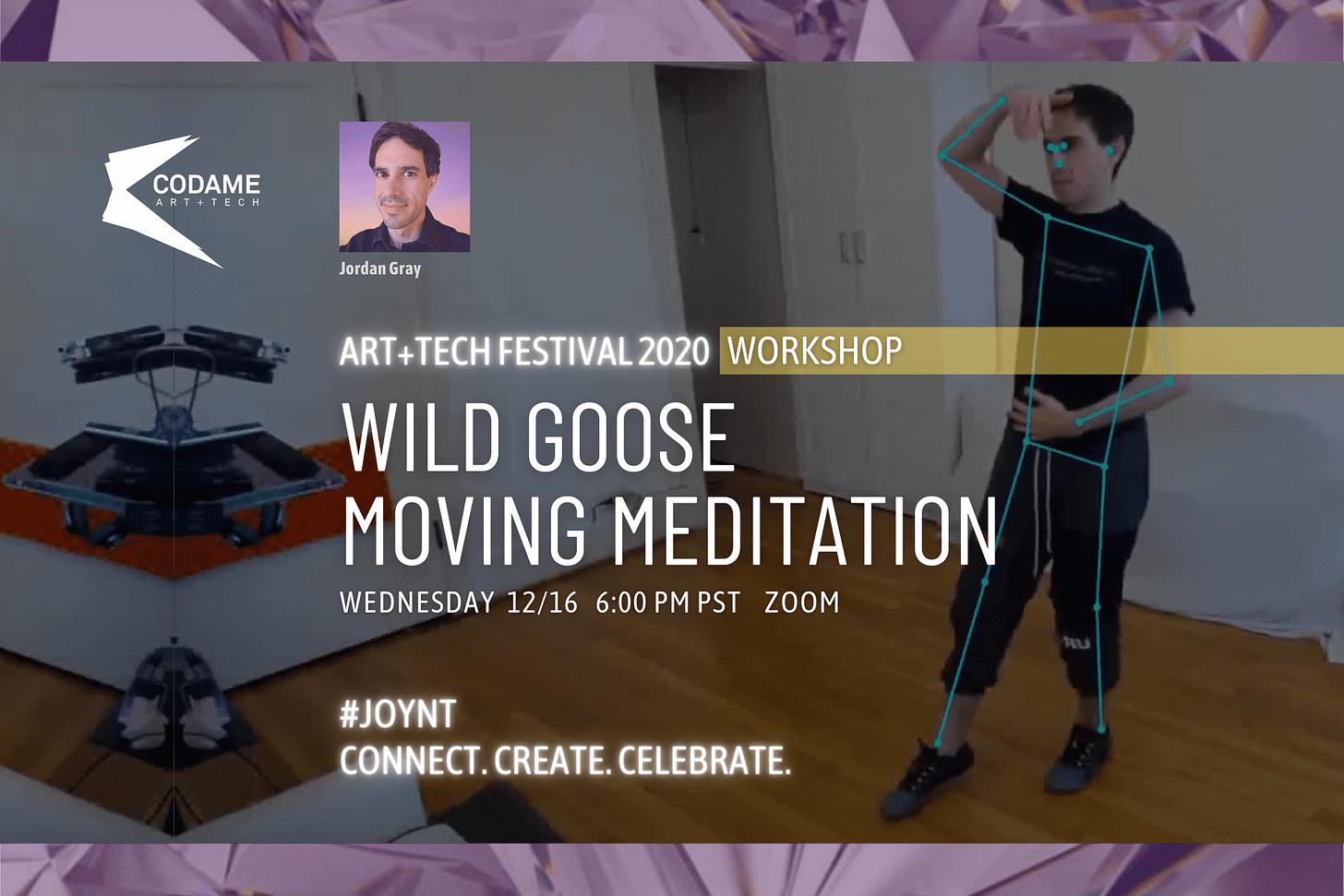 Wild Goose Moving Meditation