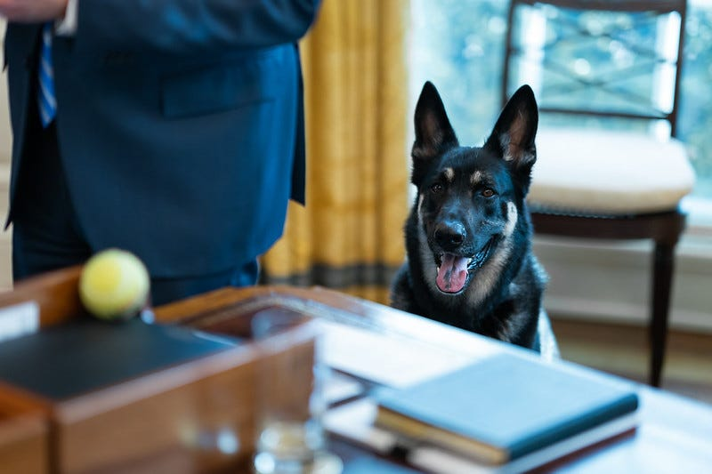 Photo of Major in the Oval Office
