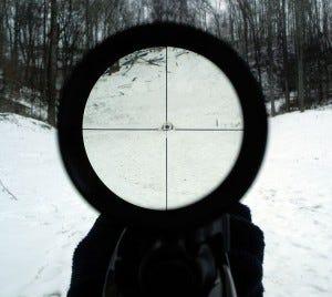 View through a rifle scope