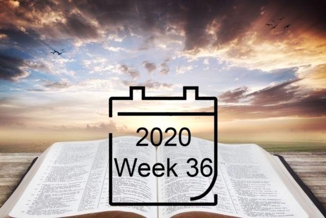 Weekly devotional - Order my steps, Lord