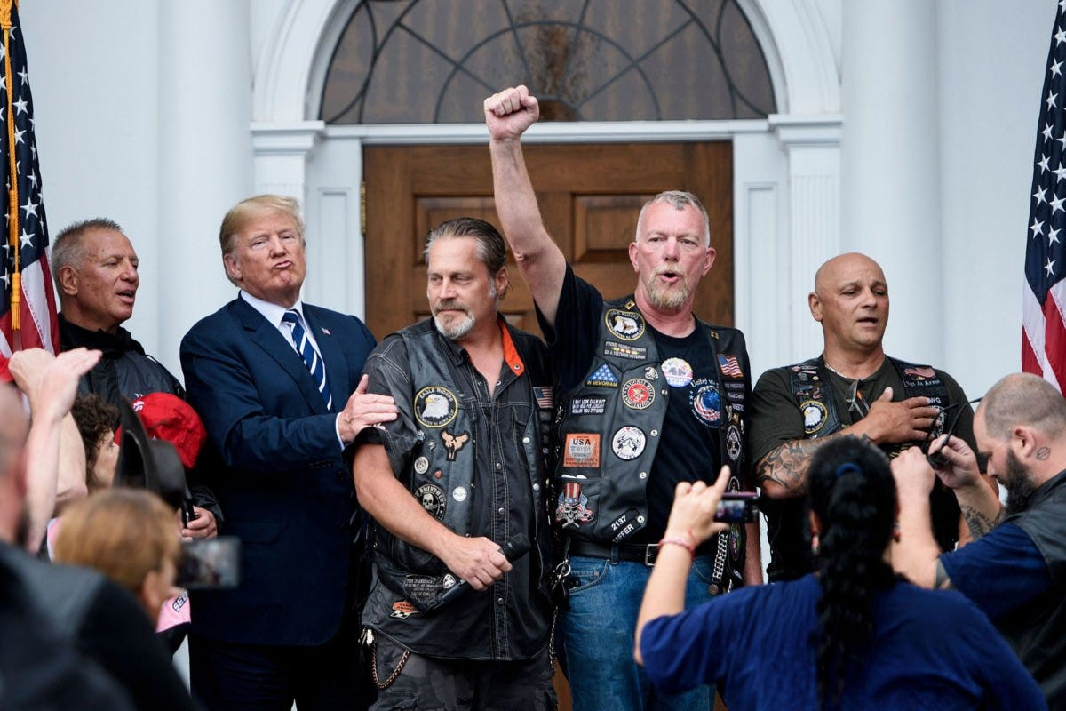 Image result for Trump brownshirts