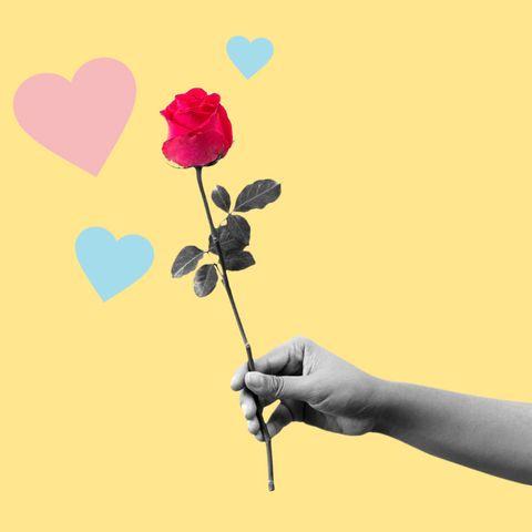 Flower, Happy, Hand, Plant, Plant stem, Petal, Heart, Love, Gesture, Illustration,